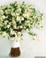 White flowers 11