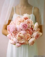 Bouquet 7 Pink