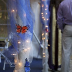 Aisle 11 Butterfly