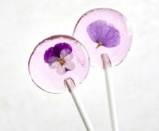 Favours 13 lila